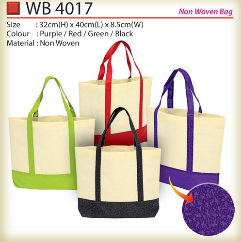 WB4017 non woven bag
