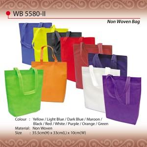 budget non woven bag wb5580-II